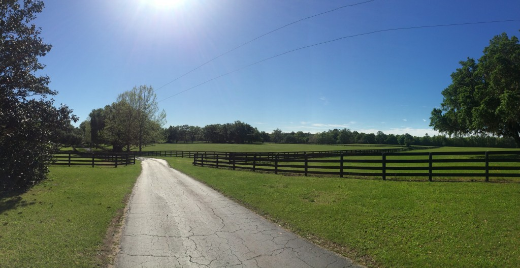 This is one of my favorite views from the farm...per usual the picture does no justice