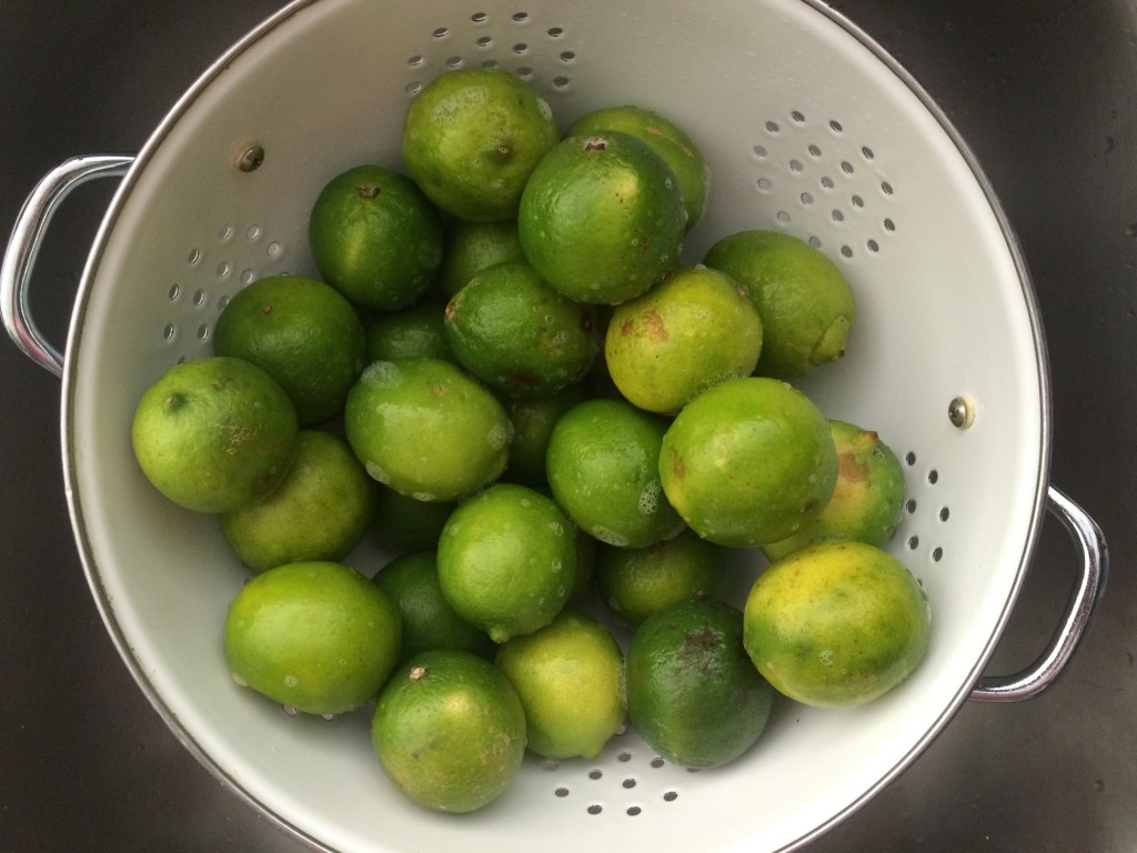 Wash the limes as people will be eating out of them